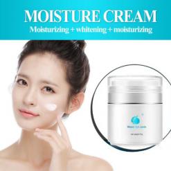 Hydra_Whitening_Moisturizing_Cream_Skin_Brightening_Relumins